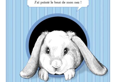 Faire-part de naissance Petit lapin garçon